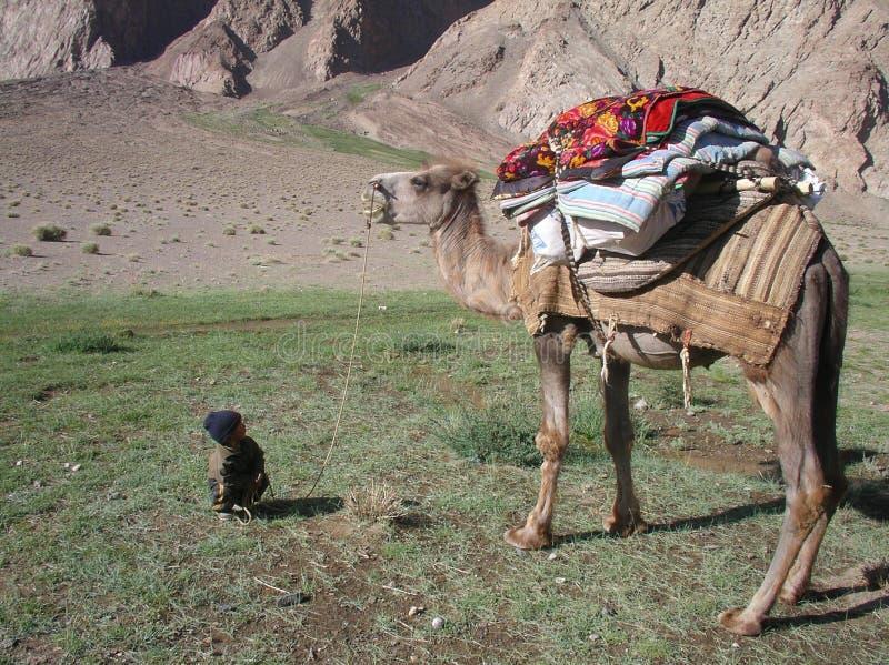 El muchacho y el camello fotos de archivo