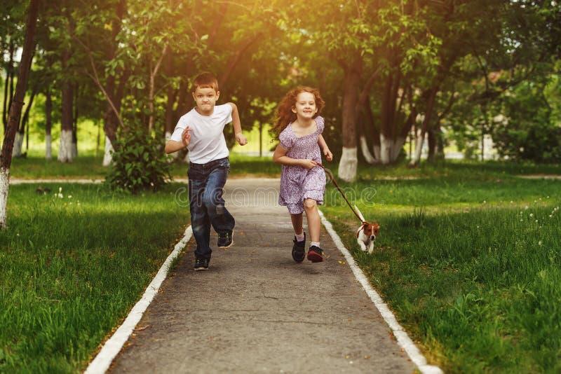 El muchacho y la muchacha corren en un parque con un perro de perrito imágenes de archivo libres de regalías