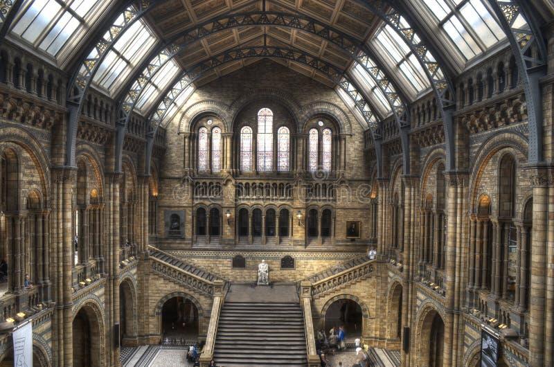 El museo de la historia natural de Londres foto de archivo libre de regalías