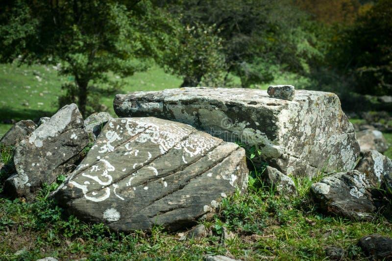 El musgo y el liquen crecen en una piedra Macro fondo de la piedra de Lichen Moss Naturaleza del oto?o de Azerbaijan imagen de archivo