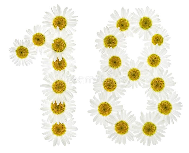 El número árabe 18, dieciocho, de las flores blancas de la manzanilla, es imágenes de archivo libres de regalías