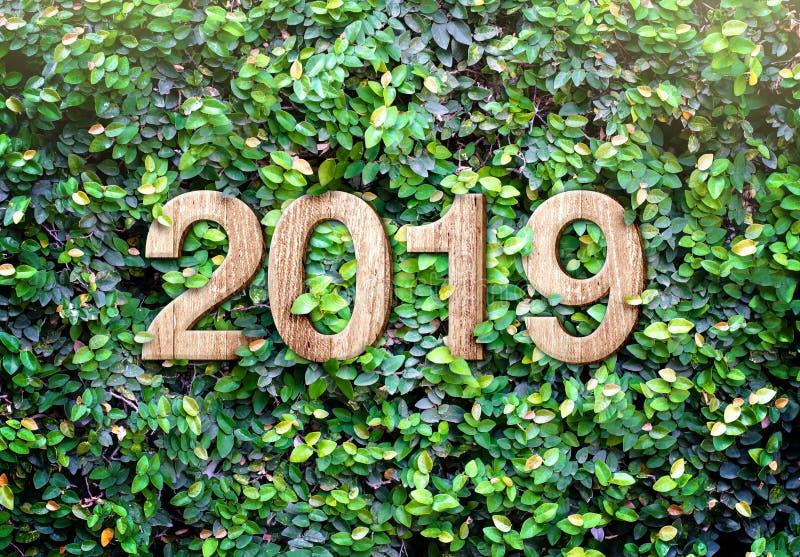 el número de madera de la textura de la Feliz Año Nuevo 2019 en verde deja al CCB de la pared imagen de archivo