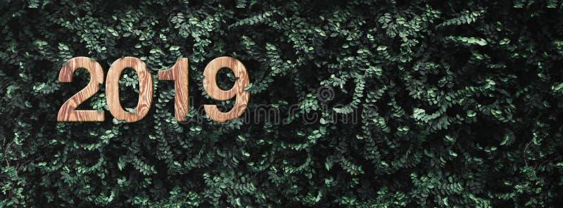 el número de madera de la textura de la Feliz Año Nuevo 2019 en verde deja al CCB de la pared fotografía de archivo
