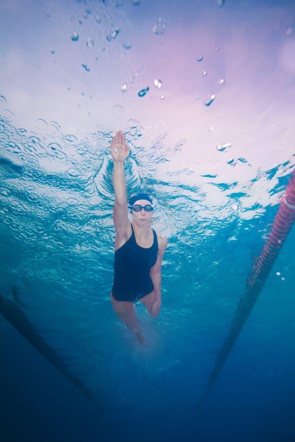El nadar en estilo del arrastre fotos de archivo