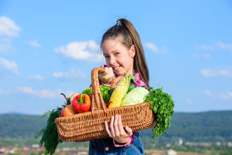El niño alegre celebra la cesta de las verduras del día de fiesta de la cosecha Concepto del festival de la cosecha Niñez en camp fotos de archivo