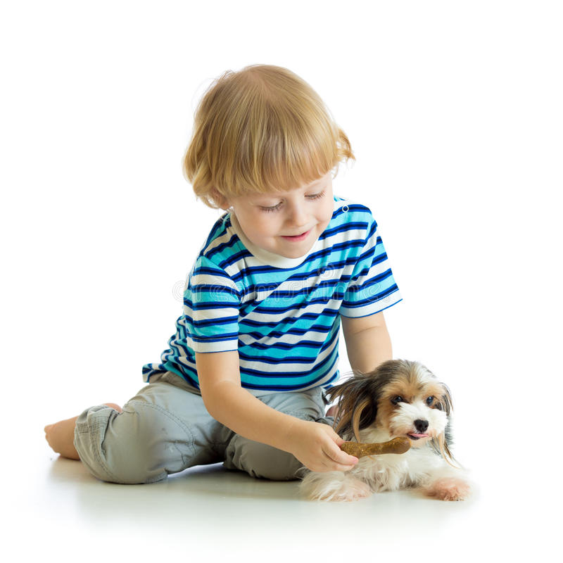 El niño alimenta el perrito del perro aislado en el fondo blanco foto de archivo libre de regalías