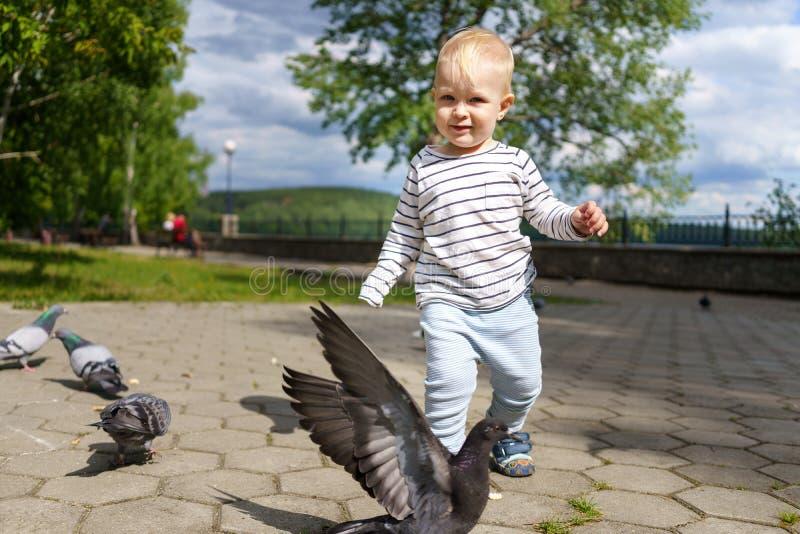 El niño camina a través del parque verde del verano y juega en un día soleado Él muy está corriendo después de las palomas Las pa imagenes de archivo