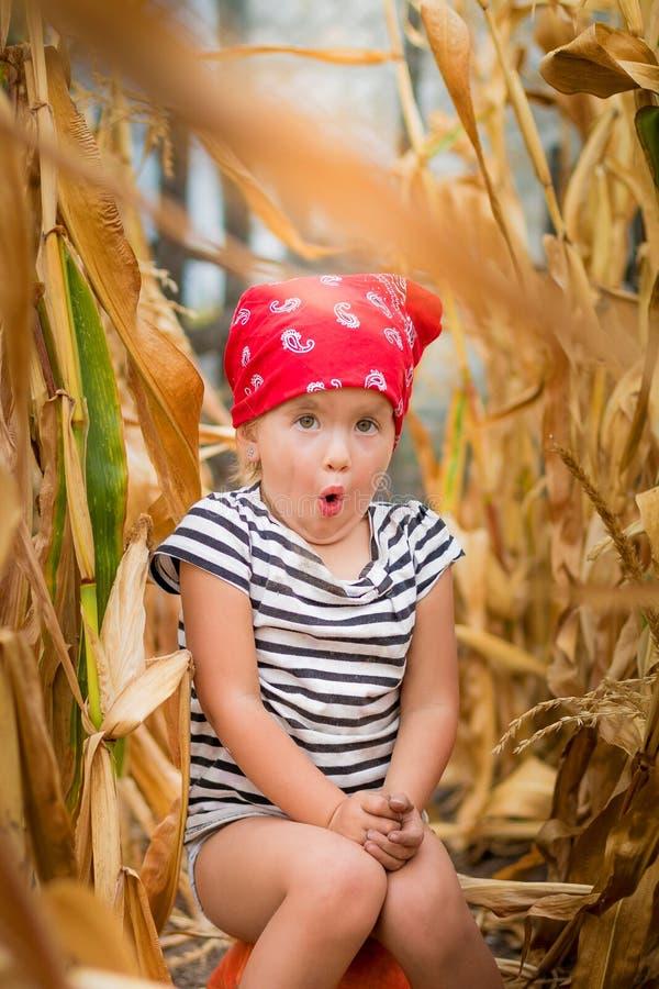 El niño en pañuelo y camiseta rojos de la raya sienta en un pumpkinin el campo de maíz Maíz seco fotografía de archivo