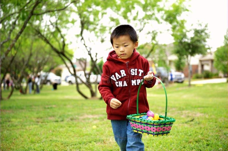 El niño escoge para arriba eggs fotografía de archivo