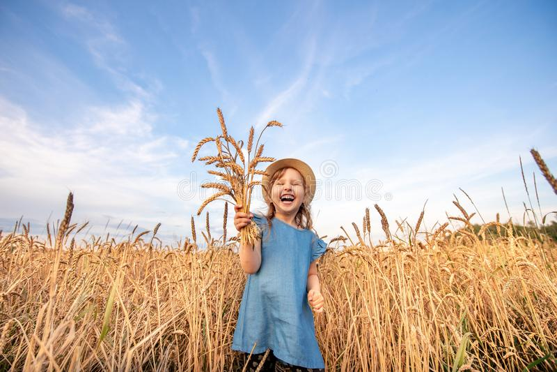 El niño feliz del retrato en un campo del trigo del otoño tira de sus manos al top y sostiene un ramo de espiguillas de cosechas imagenes de archivo