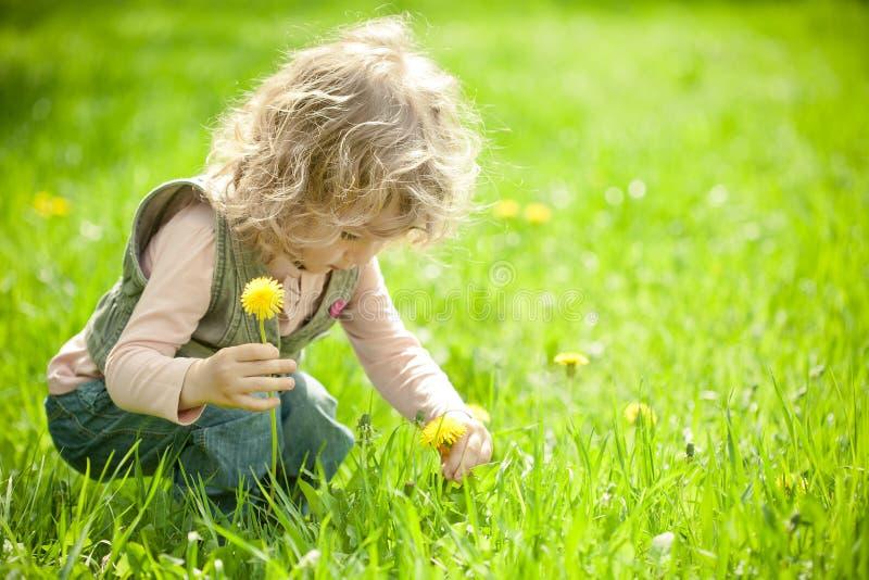 El niño hermoso escoge las flores imagen de archivo