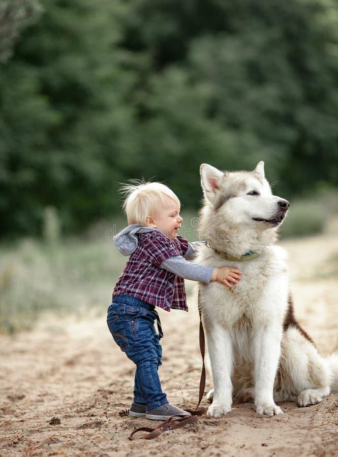 El niño pequeño abraza el perro del Malamute para el paseo en bosque imágenes de archivo libres de regalías
