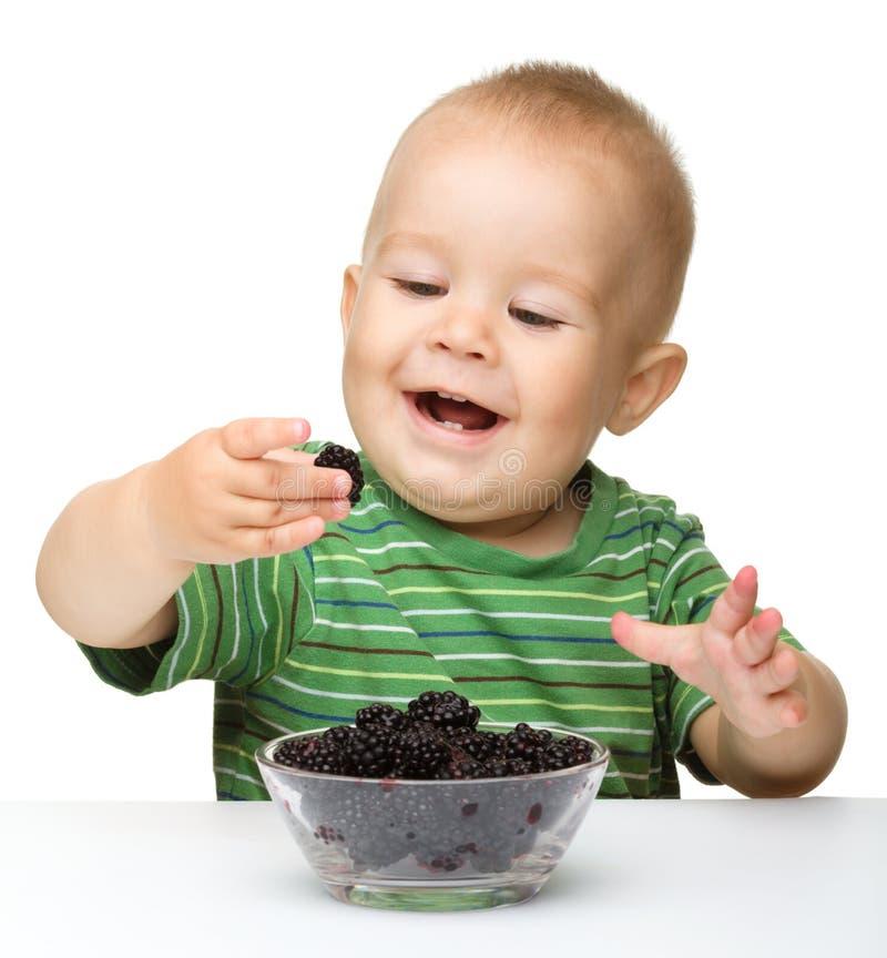 El niño pequeño alegre está comiendo la zarzamora imagen de archivo libre de regalías