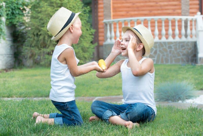 El niño pequeño da a su hermano maíz Dos hermanos que se sientan en la hierba y comer el maíz en la mazorca en el jardín foto de archivo libre de regalías