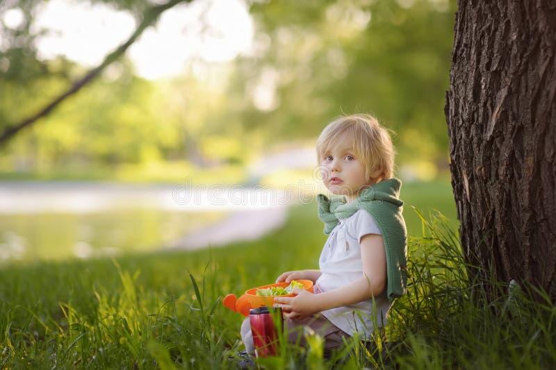 El niño pequeño está comiendo su almuerzo vegetariano en la hierba en parque en el verano Comida de la calle para los childs Boca imagen de archivo