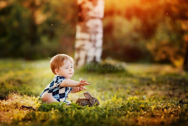 El niño pequeño está jugando con un conejo en el parque fotos de archivo libres de regalías