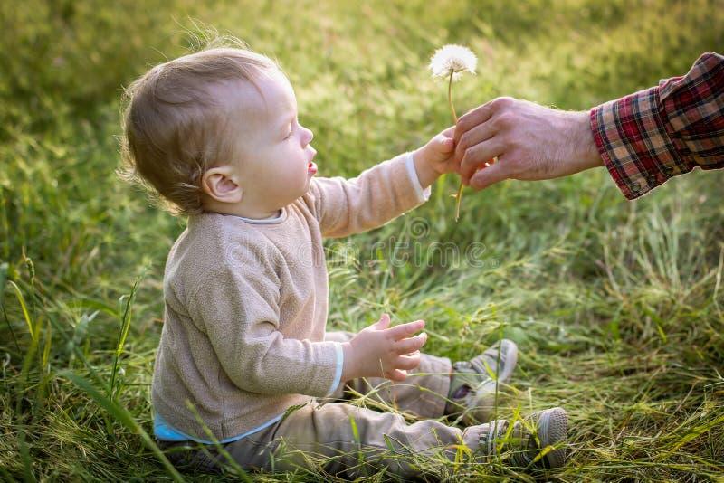 El niño pequeño lindo mira la naturaleza fotografía de archivo libre de regalías