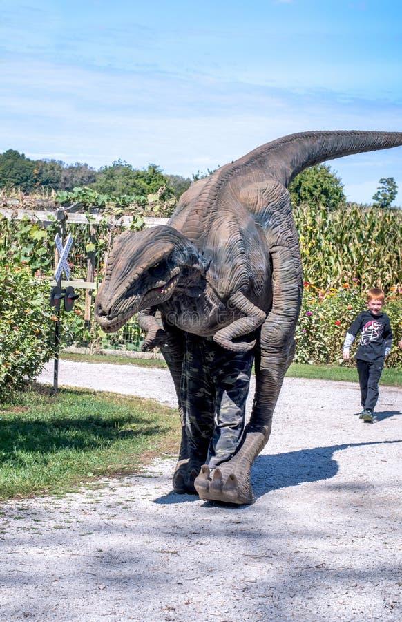 El niño pequeño persigue después de un dinosaurio imagen de archivo