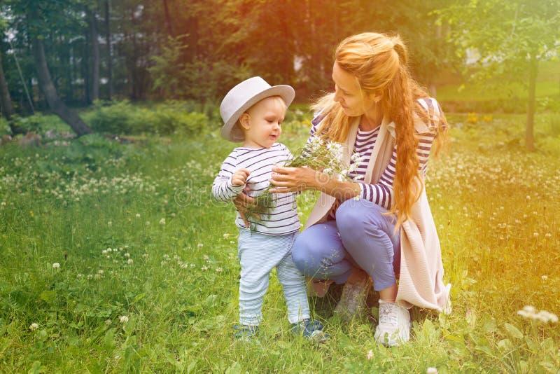 El niño pequeño y su mamá están caminando en un parque del verde del verano con un ramo de manzanillas imagen de archivo