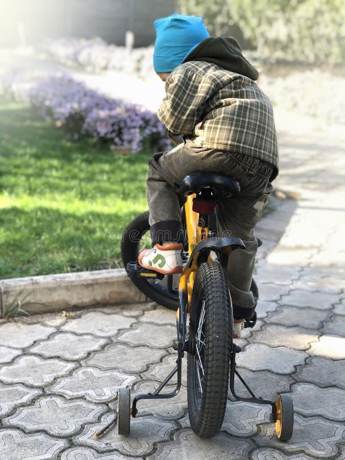 El niño se sienta en una bici en el parque en la caída foto de archivo