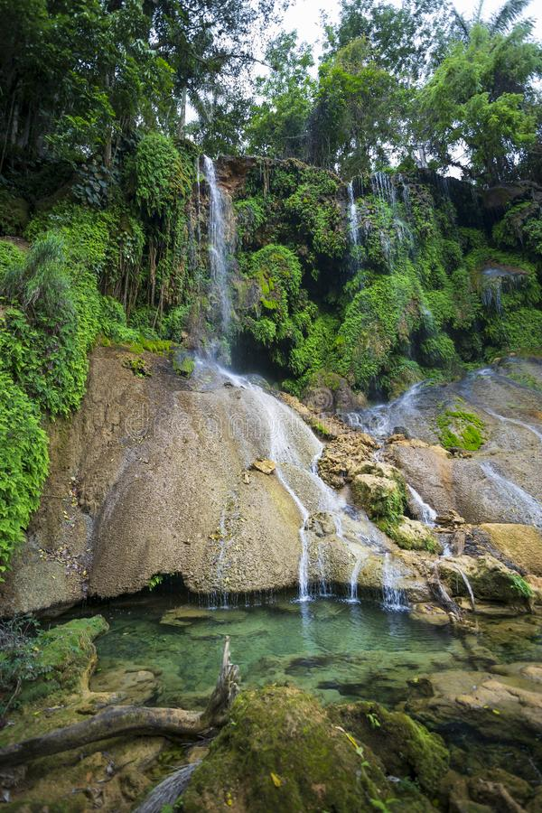 El Nicho瀑布,位于山脉del Escambray山离西恩富戈斯不远 库存照片