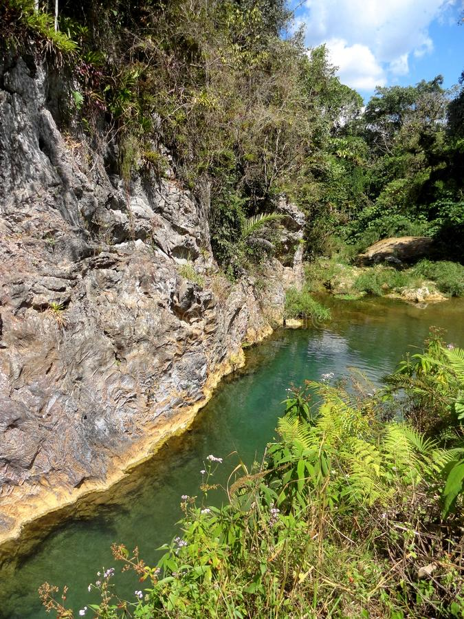 El Nicho瀑布 库存图片