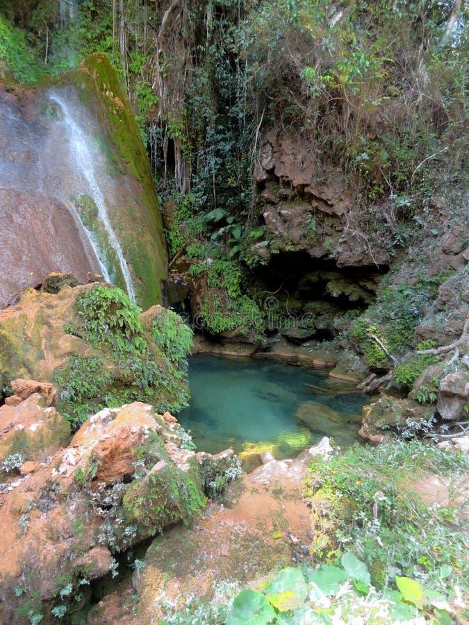 El Nicho瀑布 免版税图库摄影