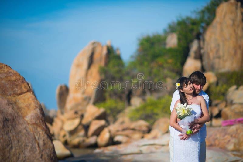 El novio abraza a la novia contra el paisaje hermoso foto de archivo libre de regalías