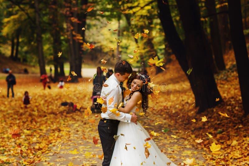 El novio abraza a una novia debajo de la ducha de hojas de oro fotos de archivo libres de regalías