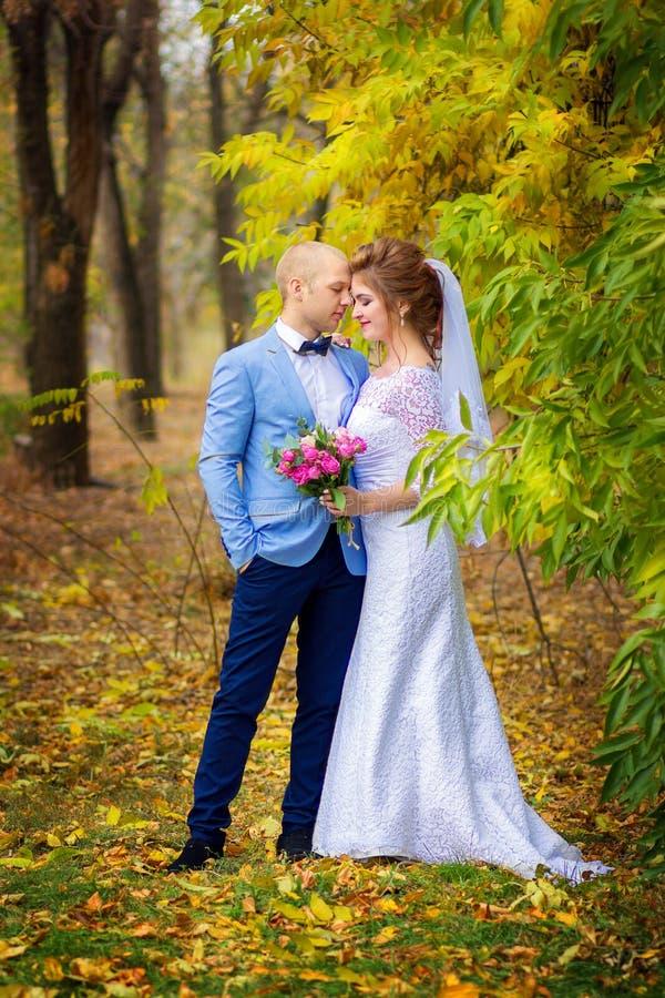 El novio y la novia caminan en el parque del otoño Actitud feliz de los recienes casados en un árbol amarillo foto de archivo libre de regalías