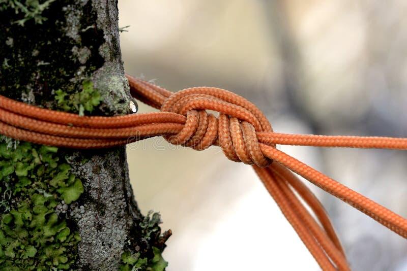 El nudo anaranjado de la cuerda imágenes de archivo libres de regalías