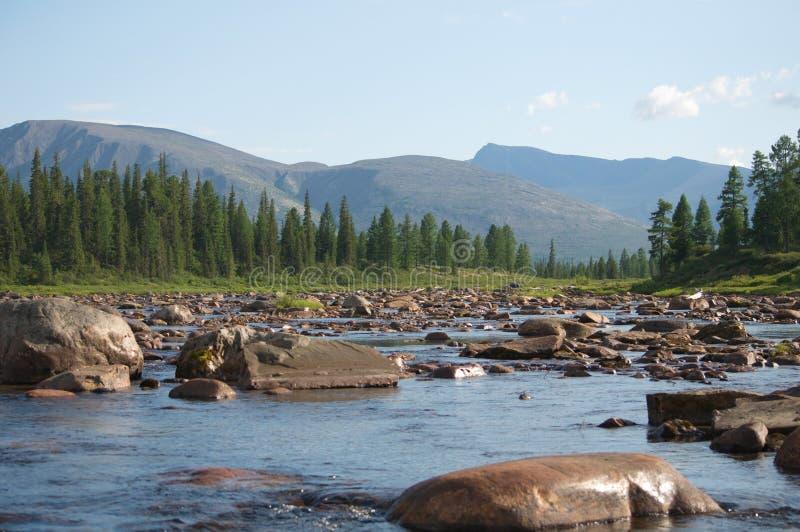El obstáculo en un río de la montaña llamó el ` del jardín de piedras del ` imagenes de archivo