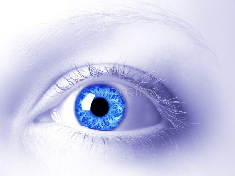 El ojo imágenes de archivo libres de regalías
