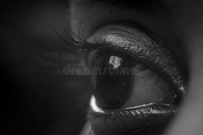 El ojo de la mujer blanco y negro - imagen fotos de archivo libres de regalías