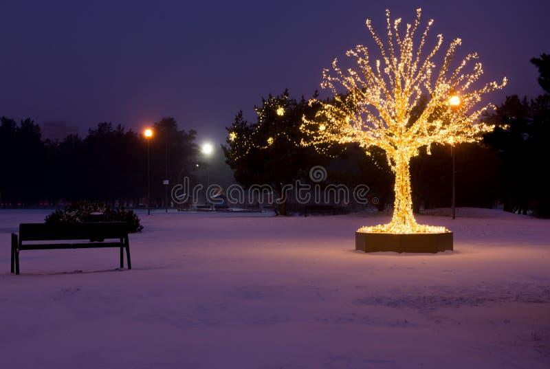 El oro enciende el árbol de navidad fotografía de archivo