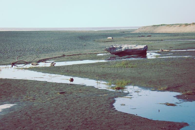 El oro fanfarronea a la playa cerca de la hora de oro, pues la niebla comienza a rodar adentro en la costa costa de California se fotos de archivo