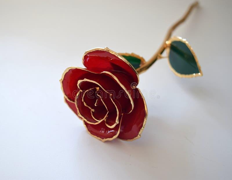 El oro sumergió a Rose foto de archivo