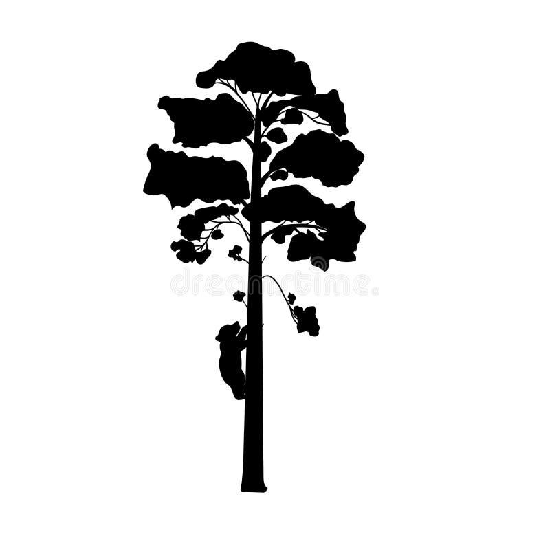 El oso de Cub sube el animal de la silueta del árbol libre illustration