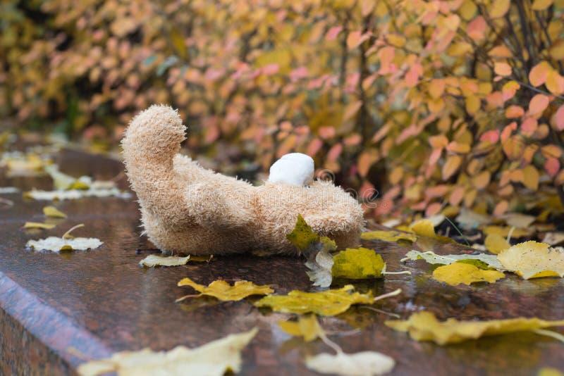 El oso de peluche de la felpa de Brown perdió en una piedra de mármol mojada fotografía de archivo libre de regalías