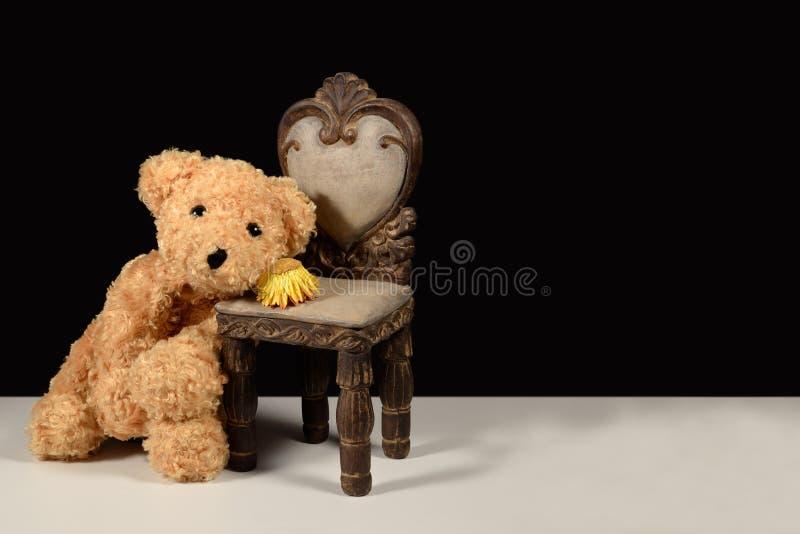 El oso de peluche que esperaba el deseo vivo triste para usted secó la flor imágenes de archivo libres de regalías