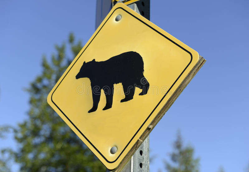 El oso peligro señal adentro el desierto imágenes de archivo libres de regalías