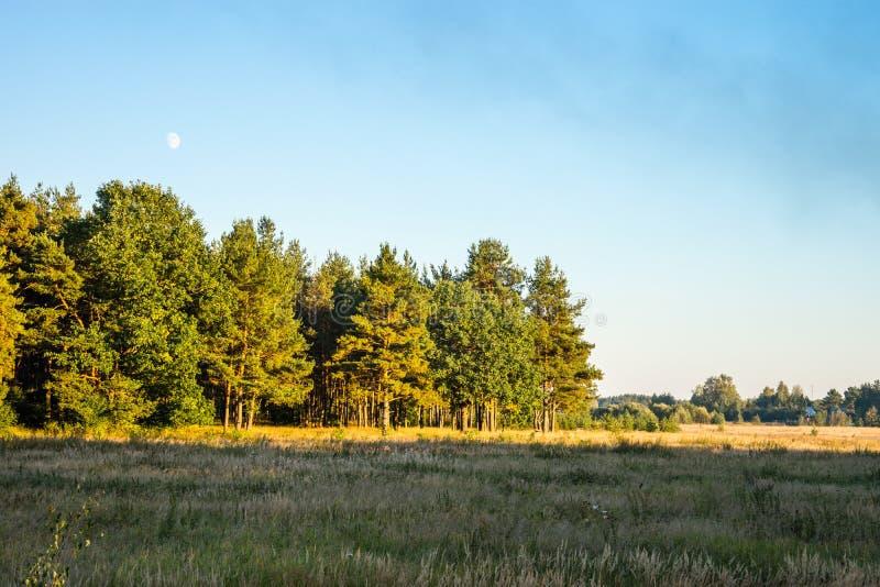 El otoño Campo y bosque en la luz de la puesta del sol del Sun fotos de archivo