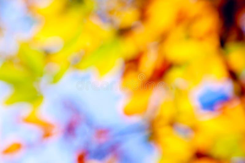 El otoño colorea el fondo fotografía de archivo libre de regalías