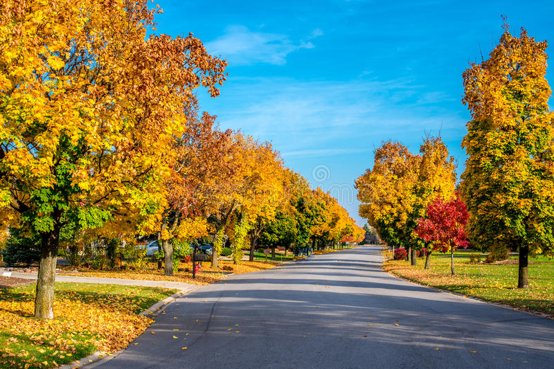 El otoño colorea la línea una calle foto de archivo