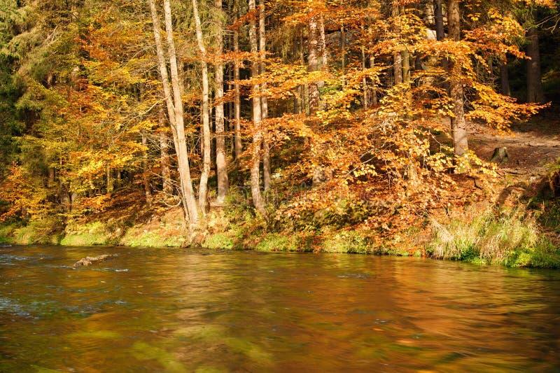 El otoño colorea el río imágenes de archivo libres de regalías