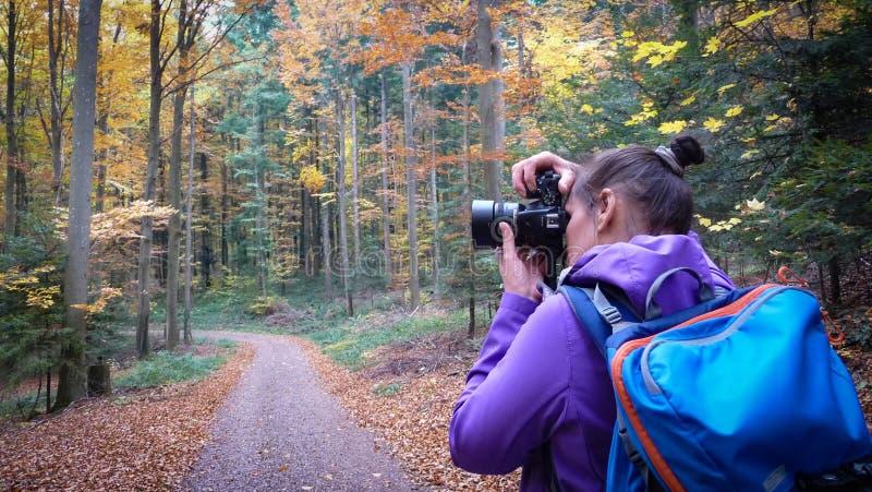 El otoño en la muchacha del bosque A está fotografiando un bosque hermoso imagenes de archivo