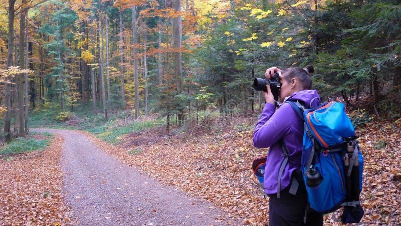 El otoño en la muchacha del bosque A está fotografiando un bosque hermoso foto de archivo libre de regalías