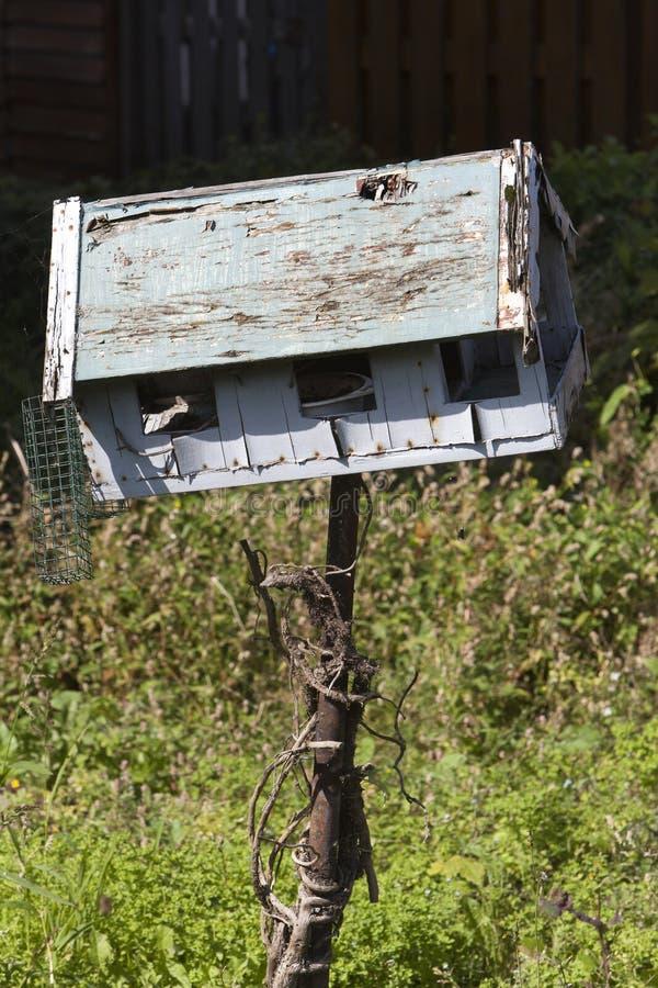 El pájaro ha volado foto de archivo libre de regalías