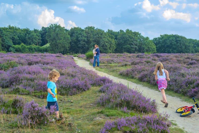 El padre, la madre y sus dos pequeños niños caminan en el amarrar en un día hermoso en verano tardío con las porciones de sol y d foto de archivo
