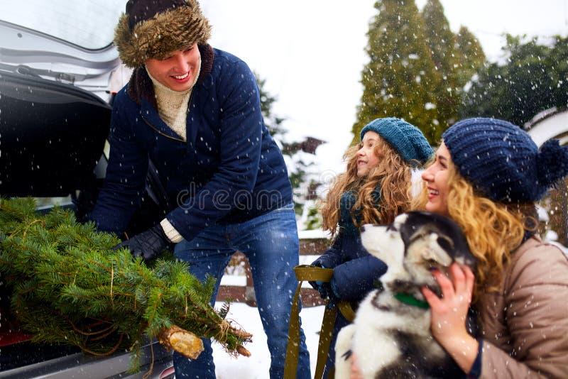 El padre trajo el árbol de navidad en el tronco del coche de SUV a la hija, a la madre y al perro para adornar a casa La familia  foto de archivo libre de regalías